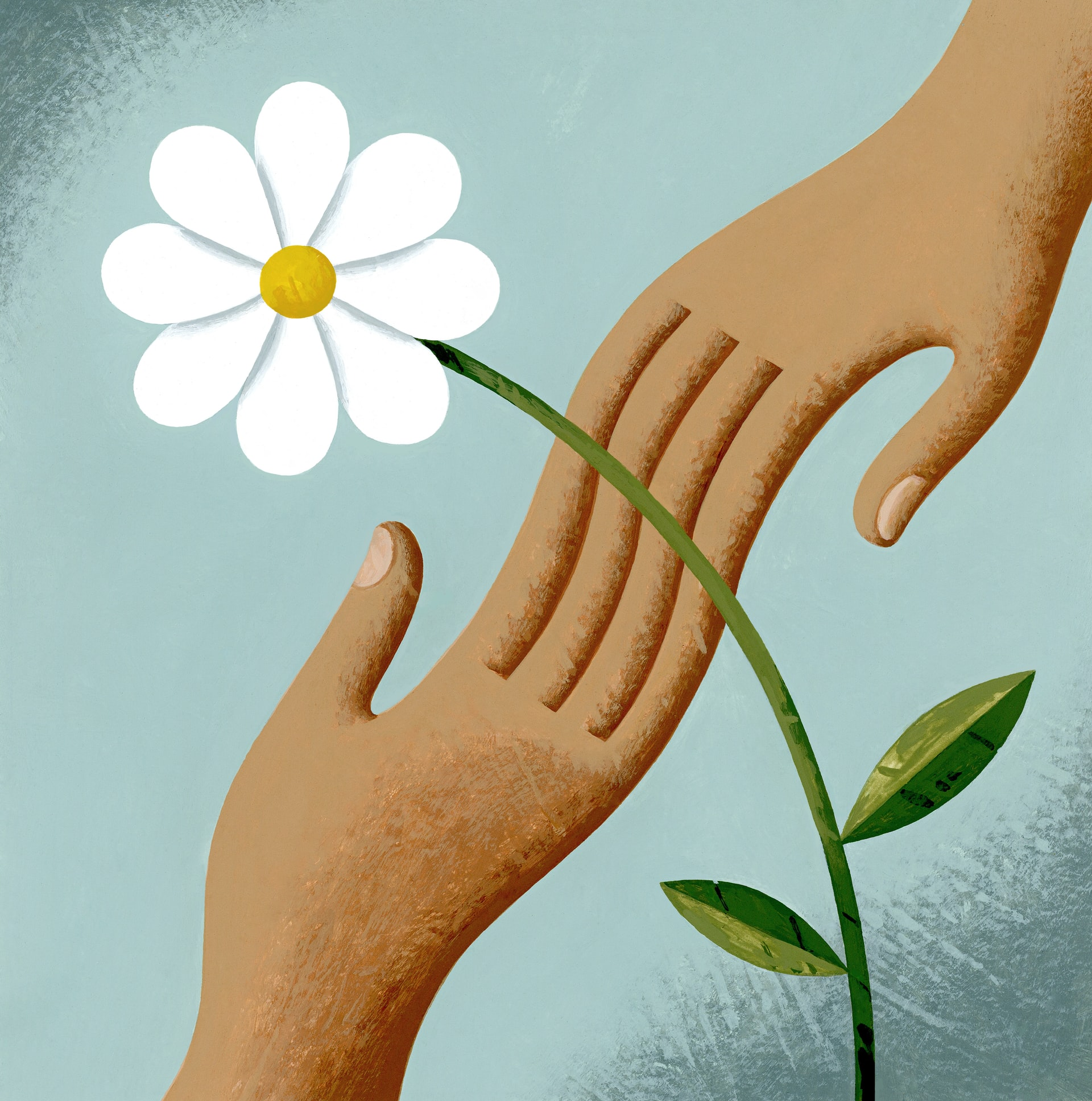 An illustration of two helping hands and a white flower